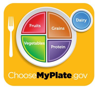 MyPlate shows that half of the plat is invisible